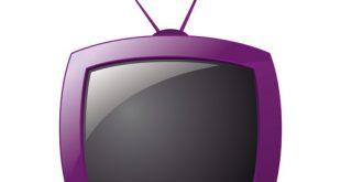 Focus sur les audiences d'émissions du dimanche après-midi